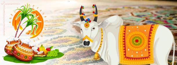 Pongal 2021 - 2021 Pongal Festival Date and Significance